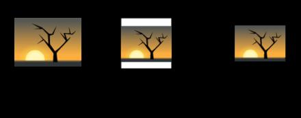 図3 画像のリサイズ処理の流れ