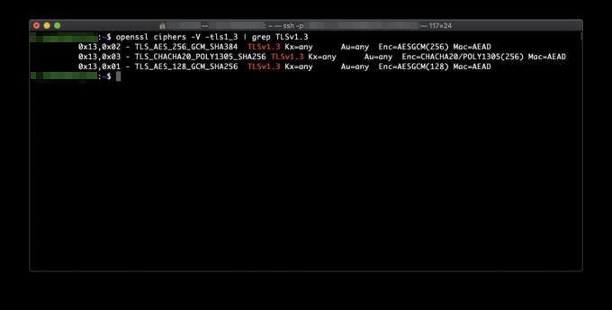 openssl ciphers -V -tls1_3   grep TLSv1.3の実行例
