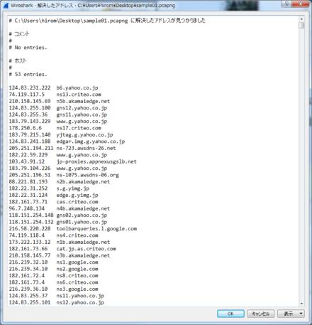 図24 「解決したアドレス」では、パケットで使われているIPアドレス情報などをまとめてチェックできる
