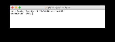 Mac ターミナルでの接続成功画面